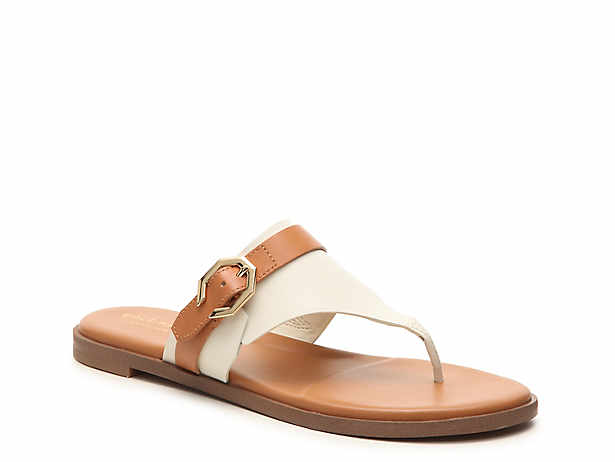 cb247a68c Cole Haan Findra Sandal Women s Shoes